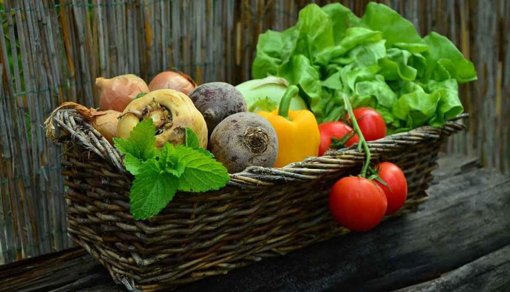 Buntes Gemüse (Zwiebeln, Pastinaken, rote Beete, Paprika, Tomaten, Salat, Kohlrabi)
