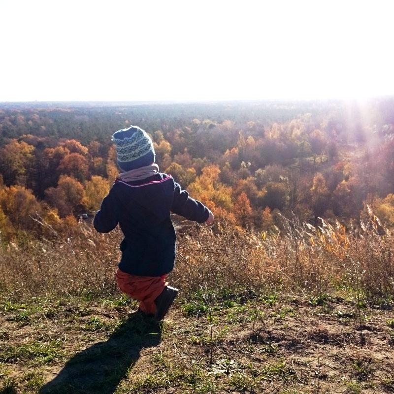 Junge in der Sonne im Herbstwald (tankt Vitamin D)