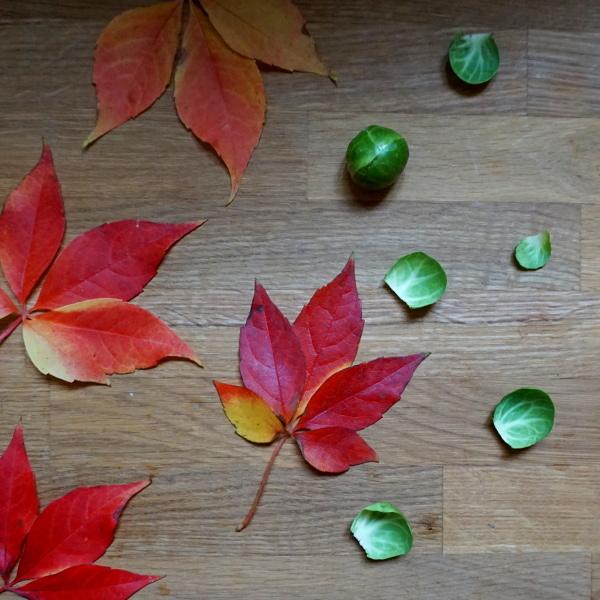 Rosenkohl und bunte Herbstblätter